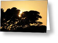 Sunset Silhouette II Greeting Card