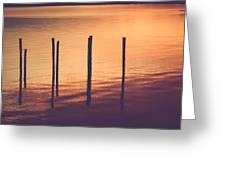 Sunset Silouette Greeting Card