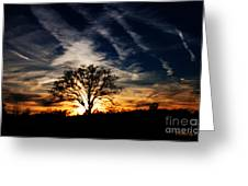 Sunset Skies Greeting Card by Jinx Farmer