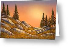 Sunset Spruces Greeting Card