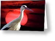 Sunset Stork Greeting Card