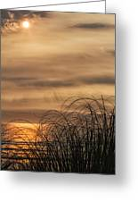 Sunset Through The Seagrass Greeting Card