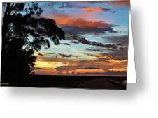 Sunset Tree Florida Greeting Card