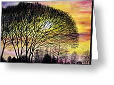 Sunset Tree Silhouette Greeting Card
