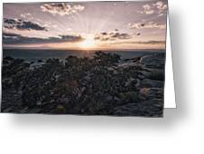 Sunset Valley Of The Gods Utah 01 B Greeting Card
