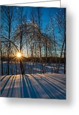 Sunset Winter Shadows Greeting Card