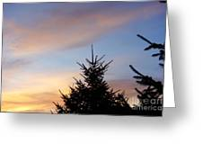 Sunset With Two Pine Trees Greeting Card