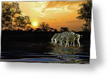 Sunset Zebras At The Watering Hole Greeting Card