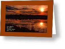 Sunsettia Gloria Catus 1 No. 1 L A. Greeting Card