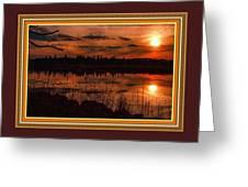 Sunsettia Gloria Catus 1 No. 1 L B. With Decorative Ornate Printed Frame. Greeting Card