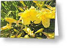 Sunshine And Flowers Greeting Card
