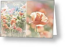 Sunshine And Poppies Greeting Card