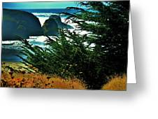 Sunshine At The Coast Greeting Card