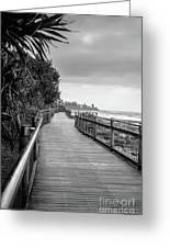 Sunshine Coast Boardwalk  Greeting Card