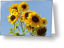 Sunshine Happy Greeting Card