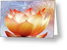 Sunshine Lotus Greeting Card
