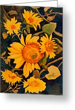 Sunshine On A Gray Day Greeting Card