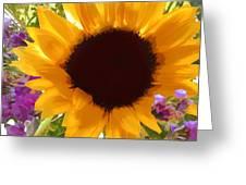 Sunshine Sunflower In The Garden Greeting Card