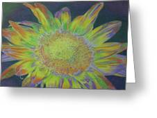 Sunverve Greeting Card
