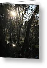 Sunwood Greeting Card