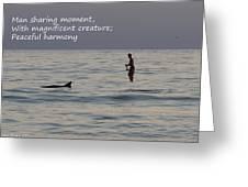 Sup With Dolphin - Haiku Greeting Card
