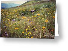 Super Bloom Greeting Card