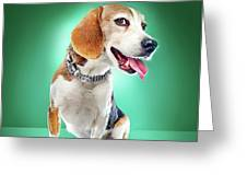 Super Pets Series 1 - Super Buckley Greeting Card