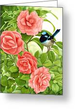 Superb Wren And Camellia Greeting Card
