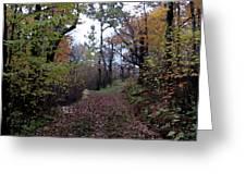 Superior Hiking Trail Greeting Card
