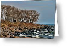 Superior Shore Greeting Card