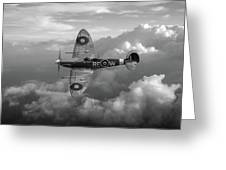 Supermarine Spitfire Vb Black And White Version Greeting Card