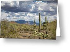 Superstition Shadows Greeting Card