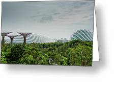Supertrees At Gardens By The Bay Greeting Card