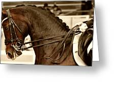 Supple Greeting Card by Dressage Design
