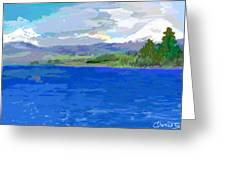 Sur De Chile Encanto Greeting Card by Carlos Camus