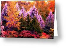 Sureal Forest Greeting Card