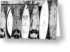 Surf Board Fence Maui Hawaii Square Format Greeting Card
