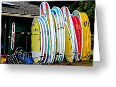 Surf Lessons Greeting Card