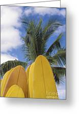 Surfboard Concession Greeting Card