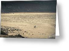 Surfing At Leo Carrillo Beach Greeting Card