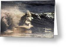 Surfs Up In Socal Greeting Card