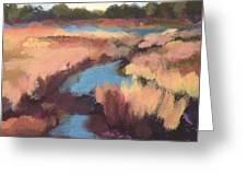 Surprise Wetland Greeting Card