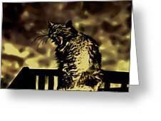 Surreal Cat Yawn Greeting Card