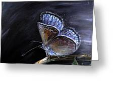 Surreal Common Blue Greeting Card by Tanya Byrd