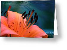 Surreal Orange Lily Greeting Card