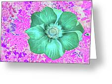 Surreal Poppy  Greeting Card