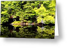 Surreal Springs Reflection Greeting Card
