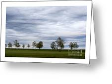 Surreal Trees And Cloudscape Greeting Card