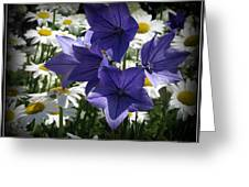 Surrounded By Daisies Greeting Card by Trina Prenzi