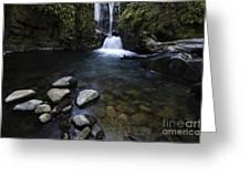 Susan Creek Falls Oregon 1 Greeting Card